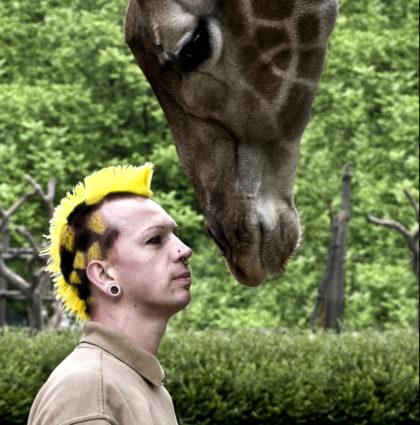 Giraffenmike